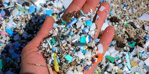 micro-plastics