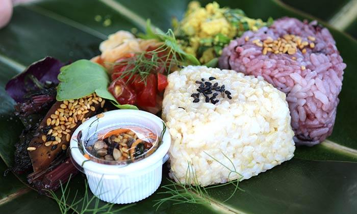 oki-veg-food-fest-suna-2