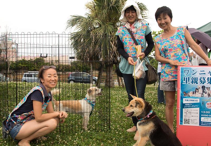 okinawa-vegan-food-fest-3-14